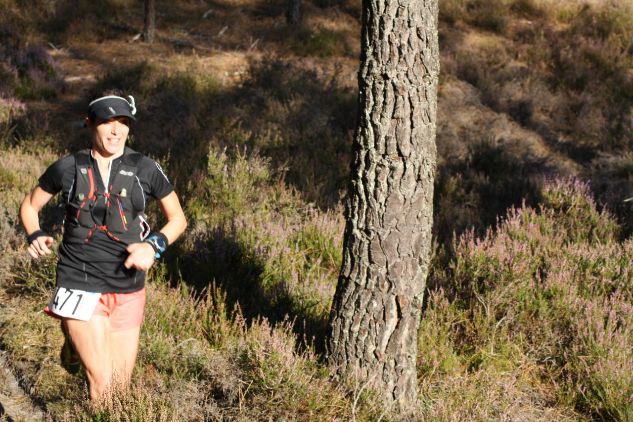 Lyrican Trail de Larchant
